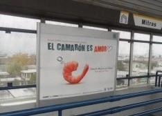 CANAIN – pesca promueve el consumo de Camarón en los medios de ISA Corporativo