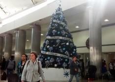 Interjet coloca monumental árbol de navidad en el AICM