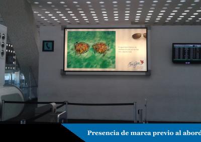 La Hawaiana Maui Jim aterriza su marca en el Aeropuerto Internacional de la Ciudad de México